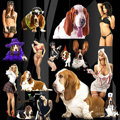 Bassets And Babes Poster by John Rizzuto