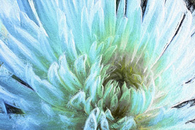 Bathing In Blue IIi Poster by Jon Glaser