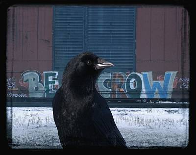 Be Crow Poster by Gothicolors Donna Snyder