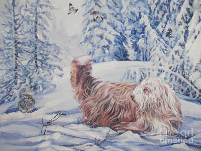 Bearded Collie In The Snow Poster by Lee Ann Shepard