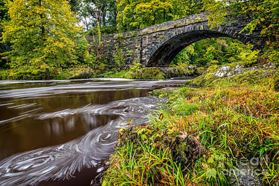 Beaver Bridge Poster by Adrian Evans