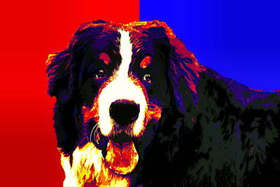 Bernese Mountain Dog Poster by Alexey Bazhan