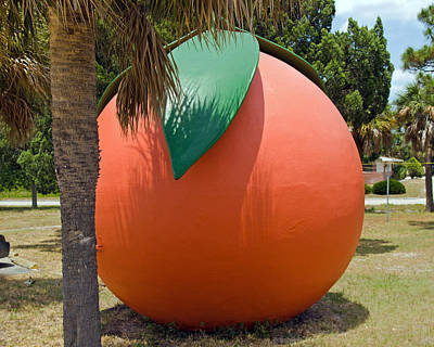 Big Orange At Melbourne On The East Coast Of Florida Poster by Allan  Hughes