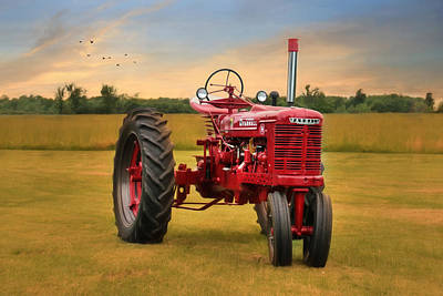 Big Red - Farmall Tractor Poster by Lori Deiter