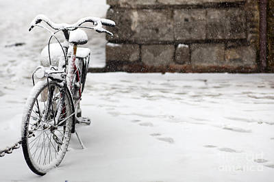 Bike Under The Snow Poster by Andre Goncalves