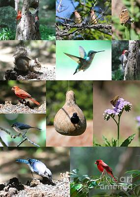 Birdsong Nature Center Collage Poster by Carol Groenen