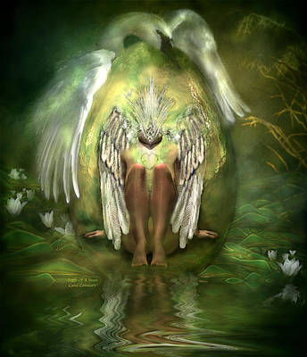 Birth Of A Swan Poster by Carol Cavalaris