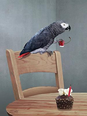 Birthday Bird Poster by Matthew Schwartz