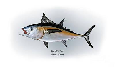 Blackfin Tuna Poster by Ralph Martens