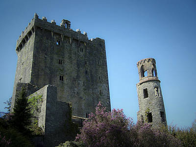 Blarney Castle And Tower County Cork Ireland Poster by Teresa Mucha