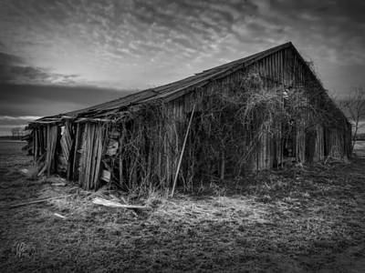 Blighted Barn 002 Bw Poster by Lance Vaughn