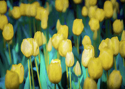 Blooms Of Yellow Poster by James Barber