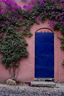Blue Door And Bougainvilleas Poster by Carol Leigh