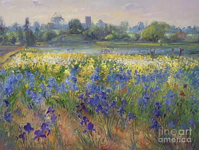 Blue Haze At Burgate Poster by Timothy Easton