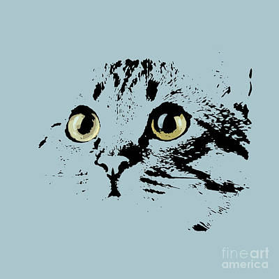 Blue Kitten Portrait Poster by Pablo Franchi