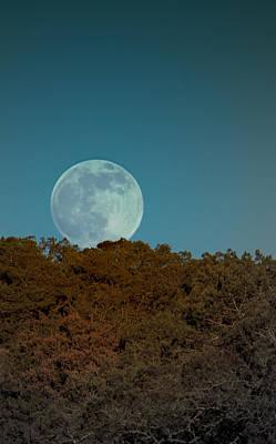 Blue Moon Risign Poster by Karen Musick