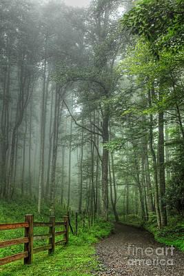 Blue Ridge - Trees In Fog Country Road I Poster by Dan Carmichael