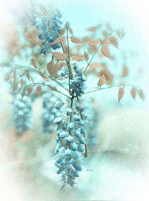 Blue Wisteria Poster by Angela A Stanton