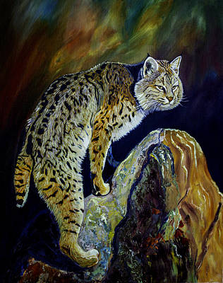 Bobcat At Sunset Original Oil Painting 16x20x1 Inch On Gallery Canvas Poster by Manuel Lopez