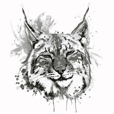 Bobcat Head Black And White Poster by Marian Voicu