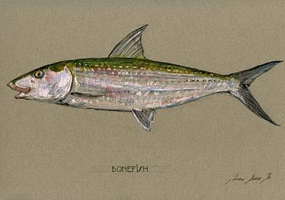Bonefish Poster by Juan  Bosco