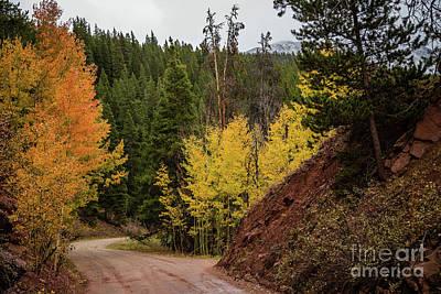 Boreas Pass Autumn Poster by Jon Burch Photography