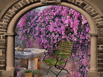 Bougainvillea 3 Poster by Manfred Lutzius