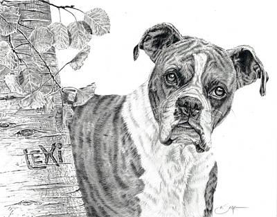 Boxer Dog Poster by Elizabeth Sage