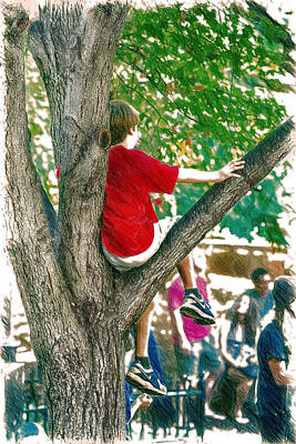 Boy In A Tree Poster by John Haldane
