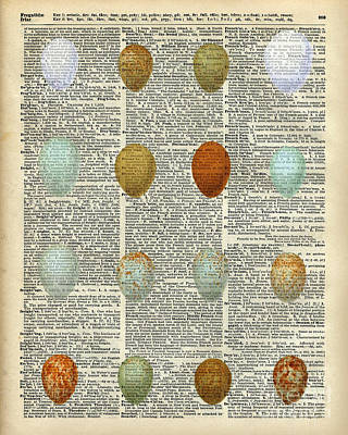 British Birds Eggs Poster by Jacob Kuch