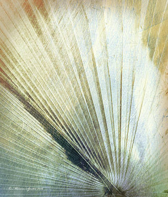 Bronze Blue Palm Frond Lh Poster by Marvin Spates