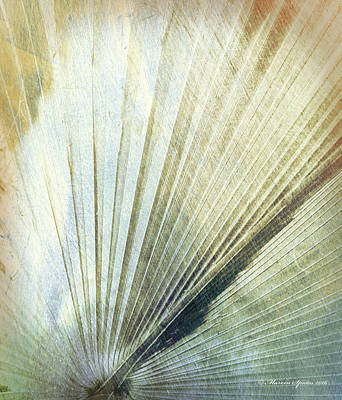 Bronze Blue Palm Frond Rh Poster by Marvin Spates
