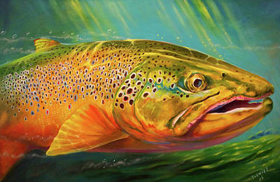 Brown Trout Portrait  Poster by Yusniel Santos