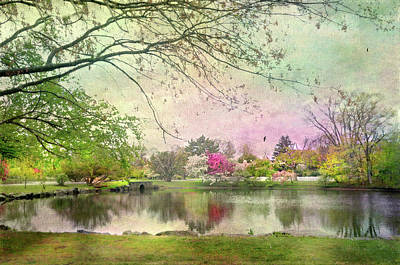 Bruce Park Pond Poster by Diana Angstadt