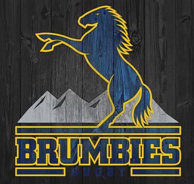 Brumbies Graphic Barn Door Poster by Dan Sproul