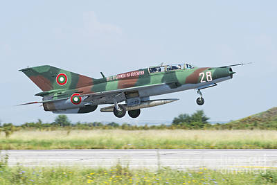 Bulgarian Air Force Mig-21um Mongol Poster by Daniele Faccioli