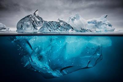 Buoyancy Poster by Justin Hofman