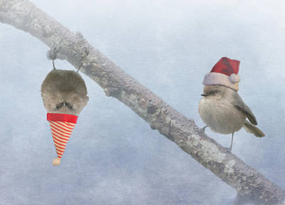 Bushtit Holidays Poster by Angie Vogel