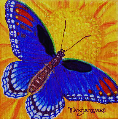 Butterfly Blue Poster by Tanja Ware