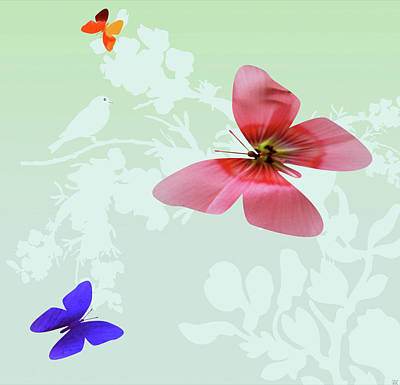 Butterfly Floral Poster by Debra     Vatalaro