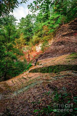 Buttermilk Falls Cliff In Autumn Poster by Scott Chimber