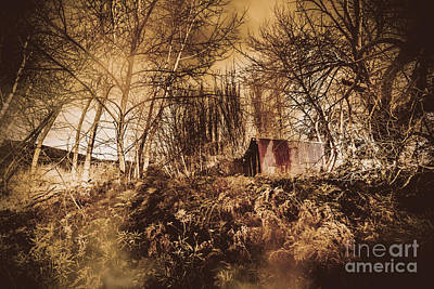 Cabin In The Woods Poster by Jorgo Photography - Wall Art Gallery