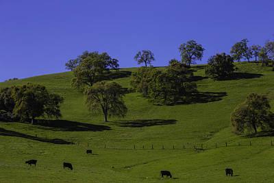 California Green Hillside Poster by Garry Gay