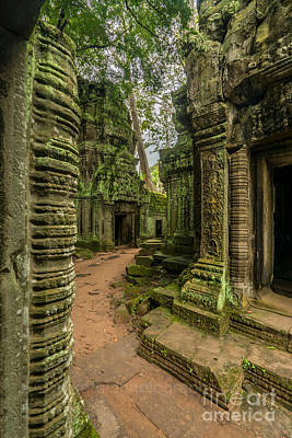 Cambodia Ta Phrom Ruins Poster by Mike Reid
