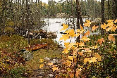 Canoe At Little Bass Lake Poster by Larry Ricker