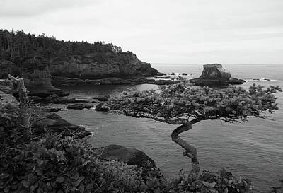 Cape Flattery Black And White Poster by Dan Sproul