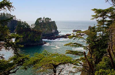 Cape Flattery Inlet Washington Poster by Stacey Lynn Payne