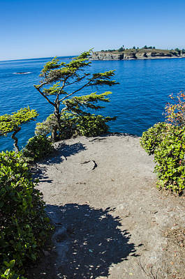 Cape Flattery Poster by Pelo Blanco Photo