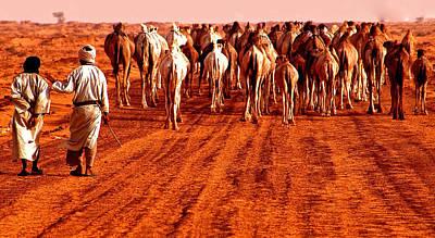 Caravan In The Desert Poster by Kobby Dagan