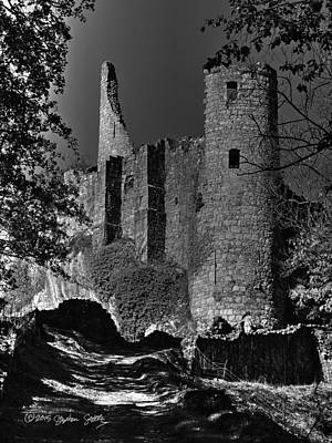 Castle Of Montaigle Poster by Stephen Settles